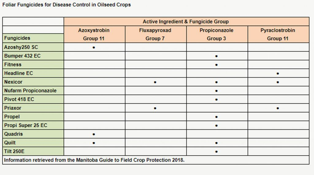 """Foliar fungicides for disease control in oilseed crops"""
