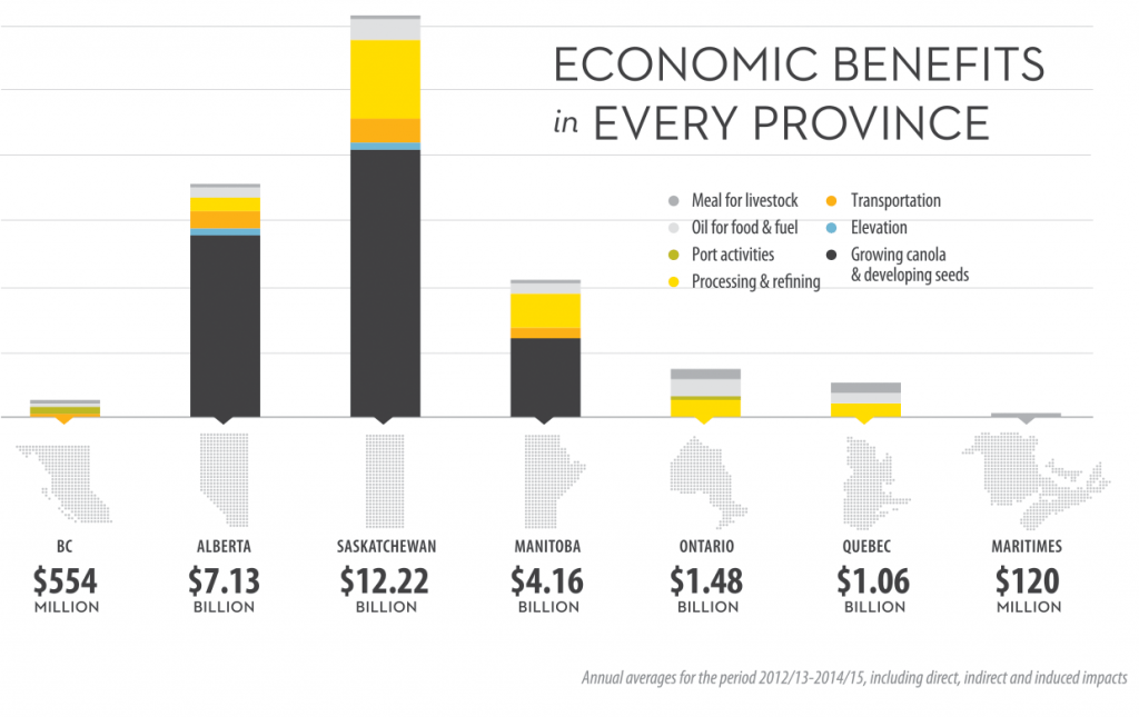 Graph showing the economic impact of canola in each Canadian province