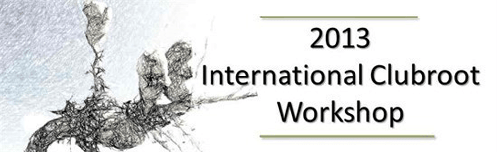 2013 International Clubroot Workshop (header image)