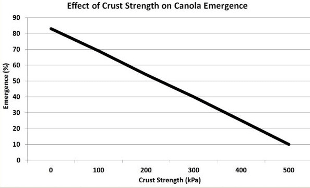Effect of crust strength on canola emergence (graph)