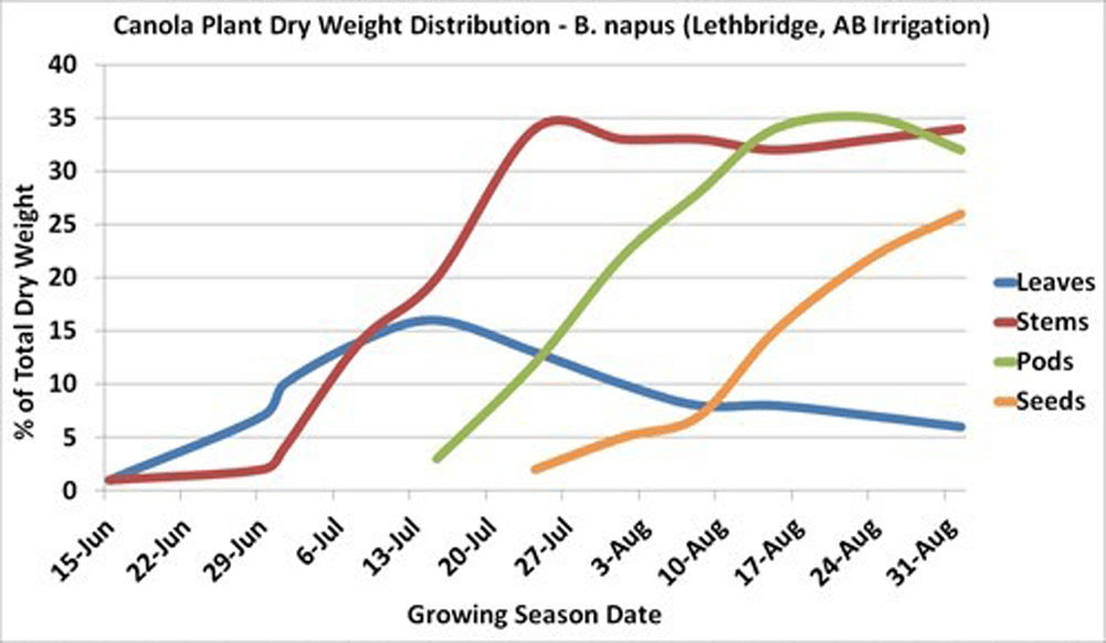 Canola (B. napus) plant dry matter production by structure, over time