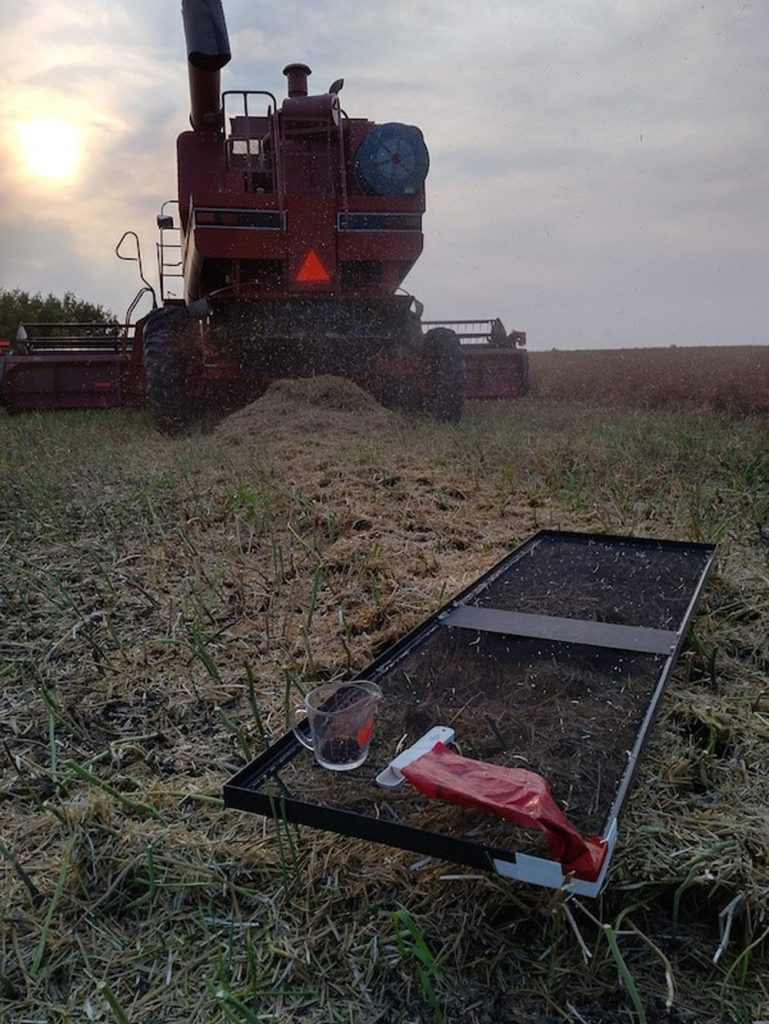 Measuring actual combine loss with a drop pan