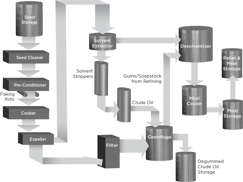 Diagram showing all stages of canola processing
