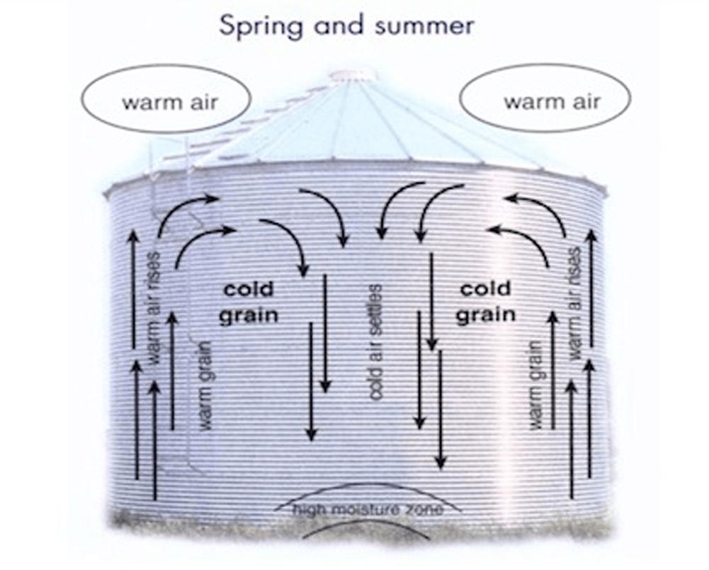 Bin moisture migration - warm months