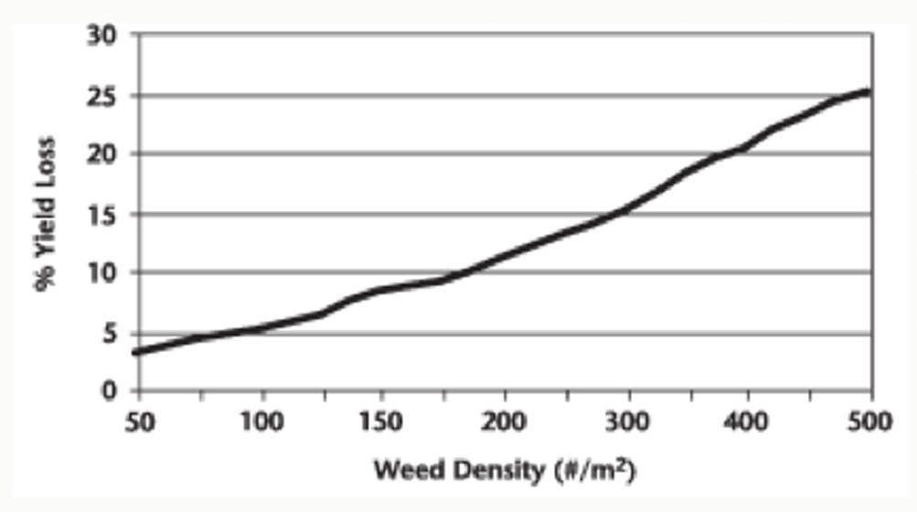 Yield losses in canola caused by green foxtail