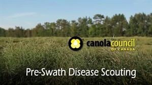 Pre -Swath _Scouting _Title