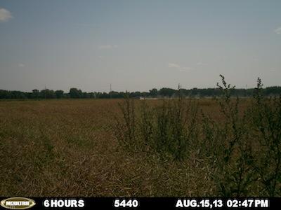 August 15 5440 plot.