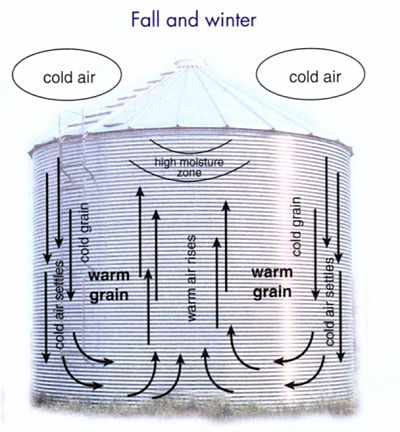 How air moves in the bin in fall and winter.