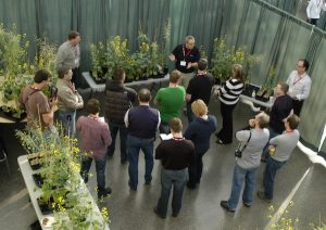 A scene from the original canoLAB.