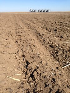 Tillage can make dry soil conditions even worse.