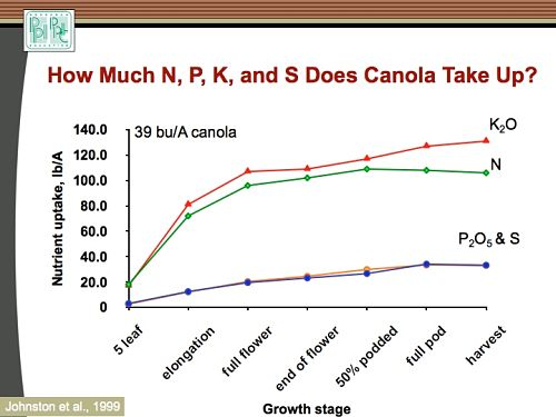 This graph shows nutrient uptake for canola. Having fertilizer in the root zone before peak uptake is the goal.