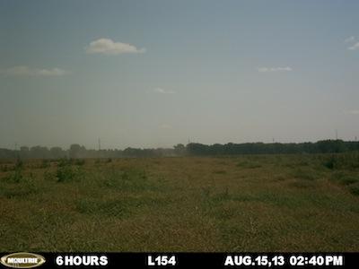 August 15 L154 plot.