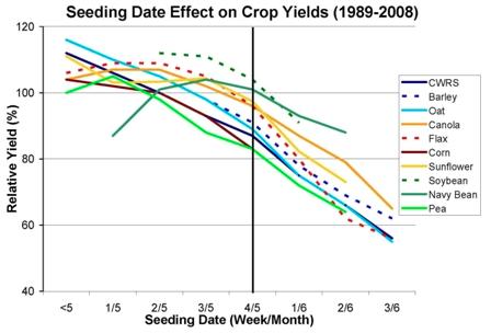 MASC yield-seeding date data