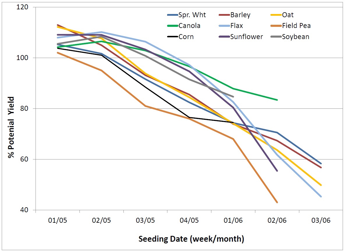 Manitoba data showing relationship between seeding date and yield for various crops.
