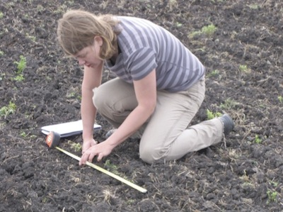 Anastasia Kubinec ensures good seed and fertilizer placement, and measures seed per foot of row.