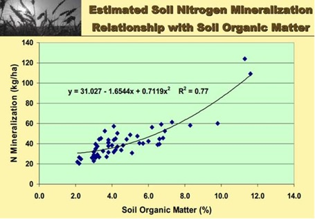 This graph shows how mineralized nitrogen increases with organic matter. Source: R.H. McKenzie and Alberta Agriculture and Forestry, 2012
