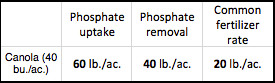 Phosphorus removal