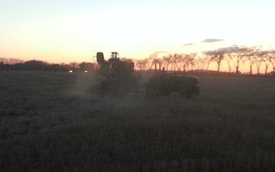 Seeding Lethbridge.