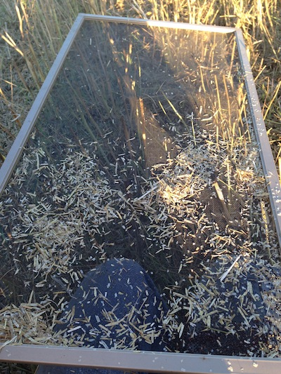 Screens can be handy to separate seed and chaff. Credit: Angela Brackenreed
