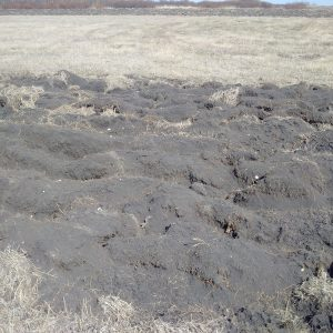 Tillage to prep forage and pasture land for spring seeding creates an almost unmanageable seedbed.