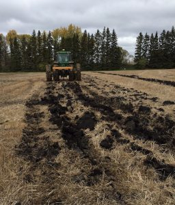 Studies show little to no yield benefit from subsoiling.