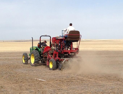 Seeding at the UCC site in Medicine Hat.