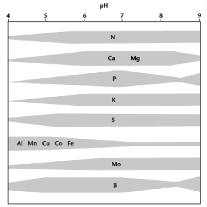 relationship_between_soil_ph_and_availability_of_various_elements