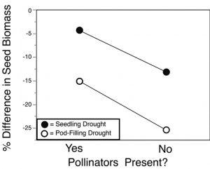 impact of pollinators on canola yield- Cartar study