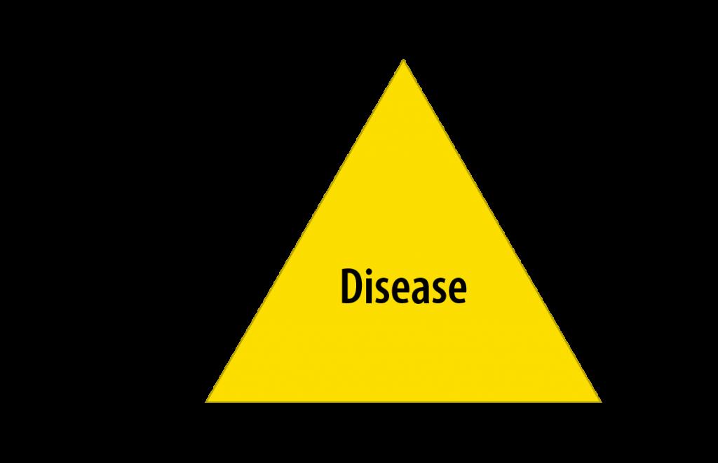 disease triangle