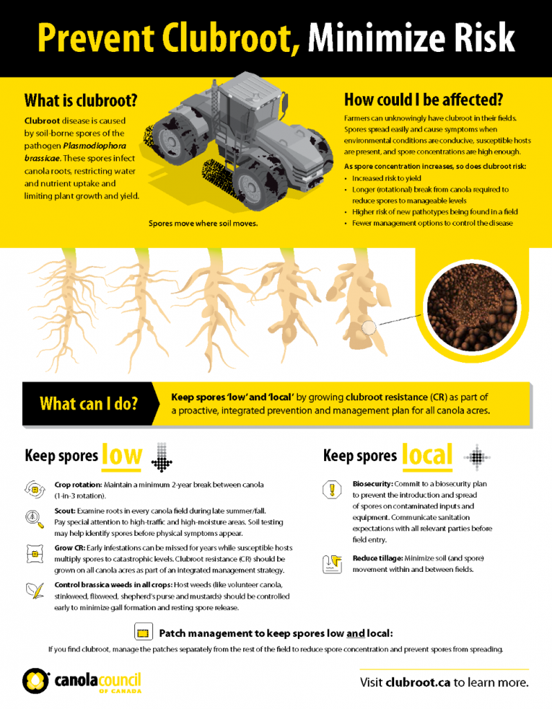 Clubroot management factsheet (where clubroot may not have been confirmed))